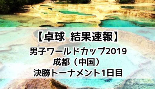 【卓球 男子ワールドカップ2019:結果速報】11/30(土)張本VS丹羽の戦いは張本選手の勝利!